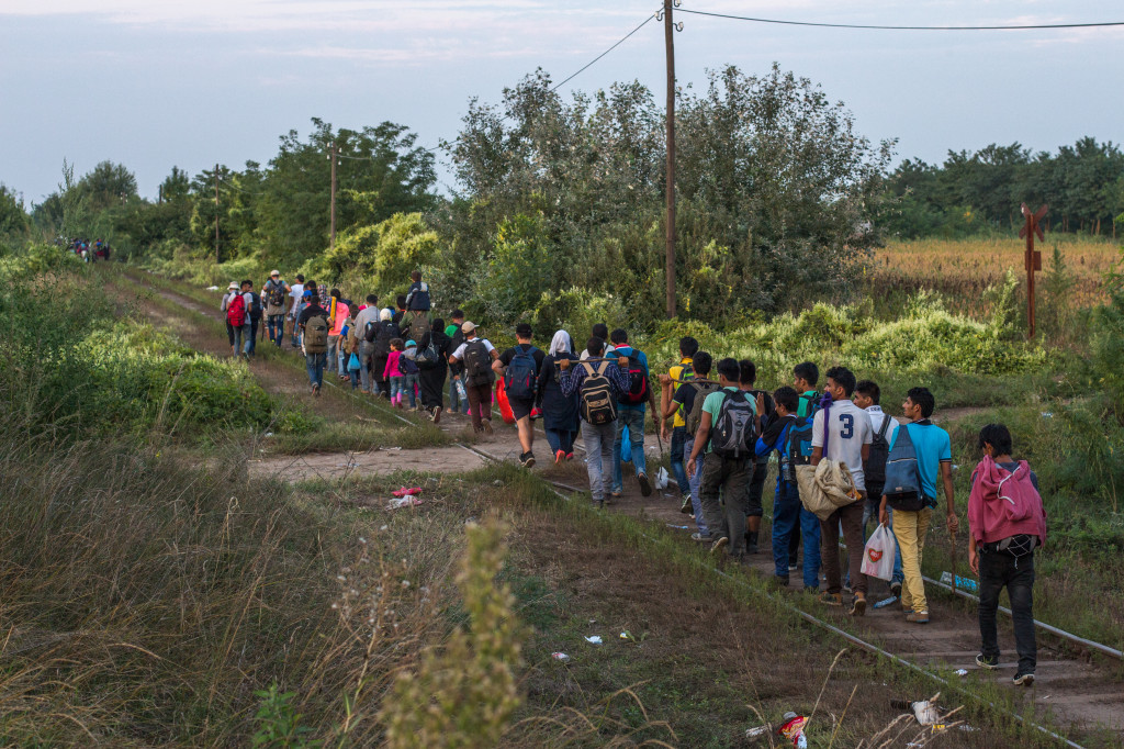 Refugees crossing the Serbia-Hungary border (Julia Druelle/Balkanist)