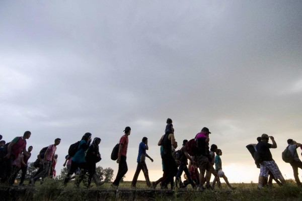 """A group of migrants leave the Serbian town of Kanjiza hoping the short walk across the border into Hungary will be the last leg of their treacherous journey into the EU."" Photo credit: AFP Photo/Csaba Segesvar)"