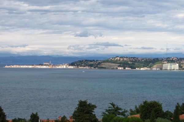 Piran_bay_-_panoramio