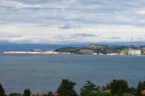 Piran_bay_-_panoramio